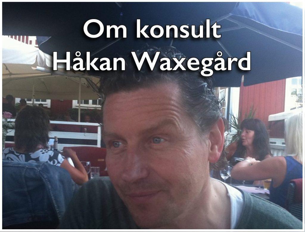 Konsulten Håkan Waxegård